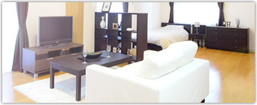 Furniture and domestic appliances lease