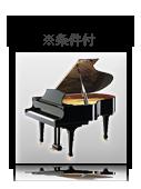 ピアノ・管弦楽器OK※条件付